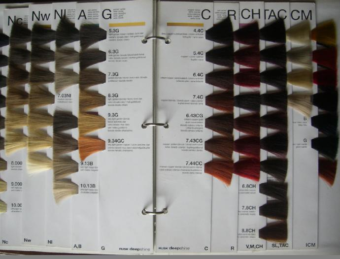 308 Hair Colour Chart 1.jpg